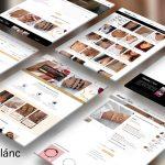 Ékszerlánc webshop